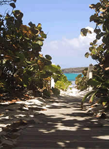 Trail to Flamenco Beach, Culebra