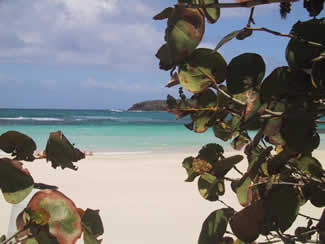 Reef in front of Flamenco Beach